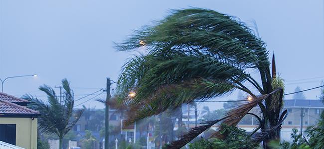 必見! 台風時の強風から窓ガラスを守る方法