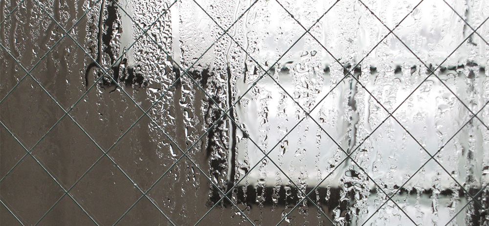 雨露で濡れた防犯ガラス