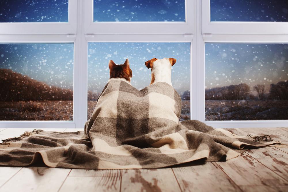 コールドドラフト現象を防いで部屋を暖かく!